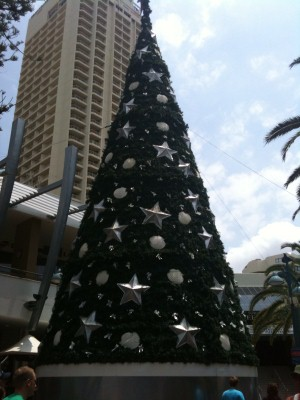 Christmas Tree at the Gold Coast
